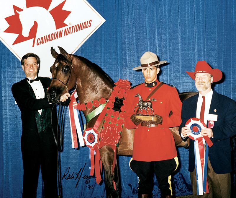 Allon-Canada-Win